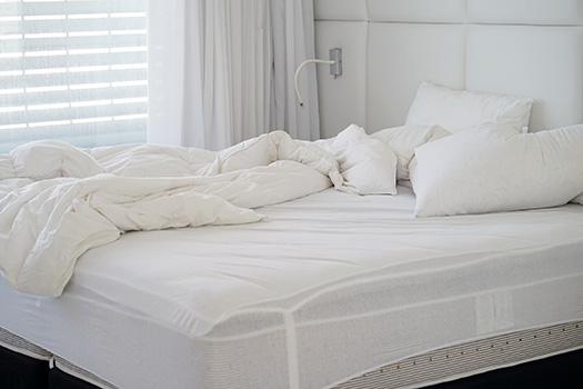 What is the Cost to Get Rid of a Mattress in Dallas, TX