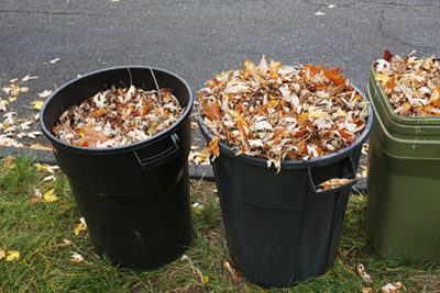 Tips to Dispose of Your Yard Waste in Dallas, TX